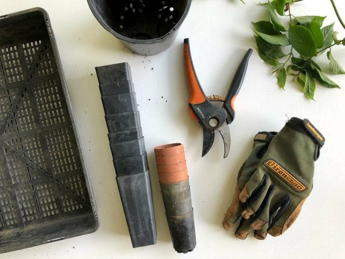 Fathers Day Gift Guide 6 Gardening Gifts For Dad & Fathers Day Gift Guide: 6 Gardening Gifts For Dad | Gardeners Dream ...