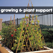 Growing & Plant Support