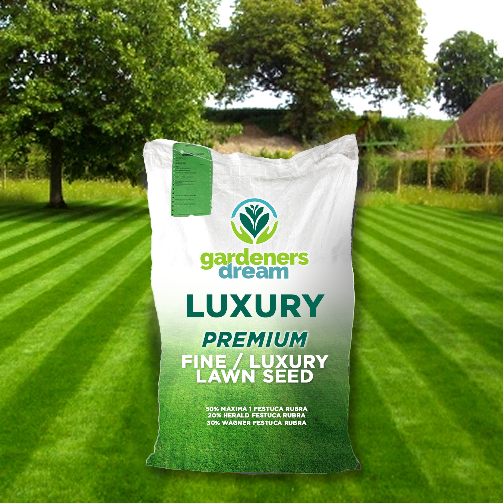 Gardenersdream Fine Lawn Golf Green Type Ornimental Lush Garden Grass Seed