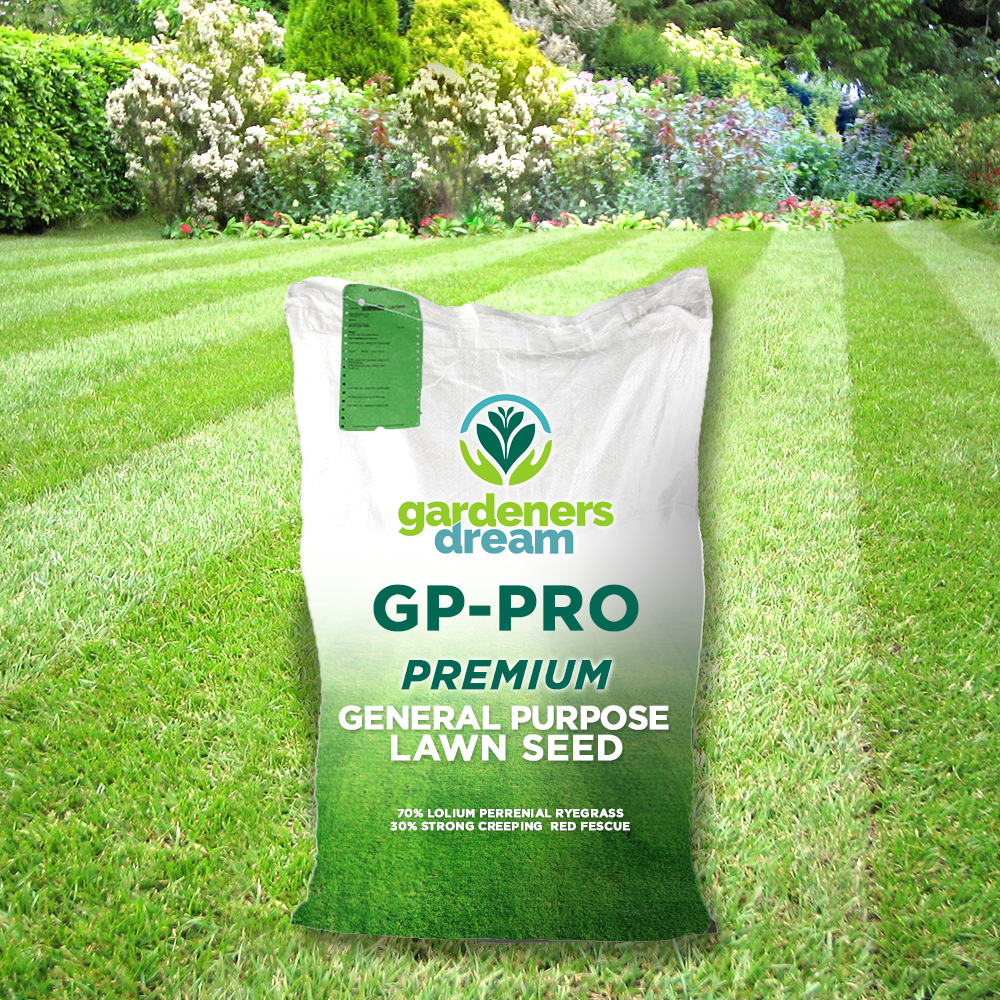 When Can You Plant Grass Seed In Uk