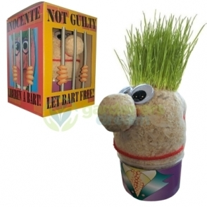 Gardenersdream Grasshead Grow Your Own Grass Hair Toy
