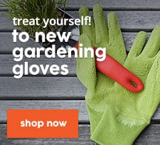 Treat Yourself to new gardening gloves